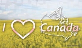 I love Canada Calgaryism