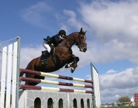 spruce meadows national tournament horse jumping show
