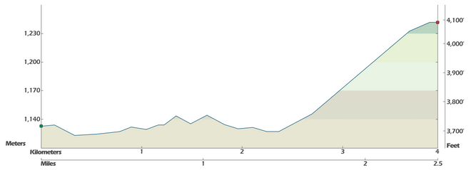 Tour of Alberta 2014 Stage Profile